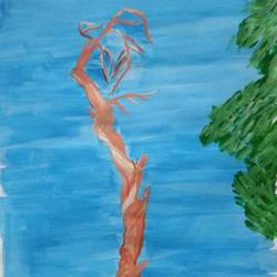 natute, 9 x 11 inch, mrs. kalyani lahon,nature paintings,paintings for living room,paper,poster color,9x11inch,GAL06571924Nature,environment,Beauty,scenery,greenery
