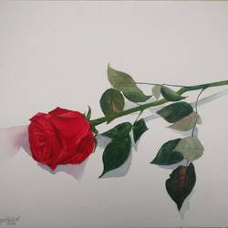 autumn rose , 10 x 13 inch, shivangi katoch,paintings,flower paintings,still life paintings,nature paintings,minimalist paintings,photorealism paintings,photorealism,realism paintings,realistic paintings,paintings for dining room,paintings for living room,paintings for bedroom,paintings for office,paintings for bathroom,paintings for kids room,paintings for hotel,paintings for kitchen,paintings for school,paintings for hospital,handmade paper,watercolor,10x13inch,GAL0925419301Nature,environment,Beauty,scenery,greenery