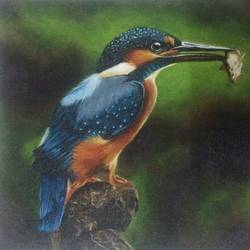 gotcha , 12 x 9 inch, simon  fernando,wildlife paintings,paintings for living room,canvas,acrylic color,12x9inch,GAL07351932