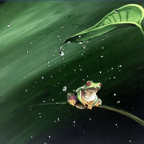 frog , 18 x 24 inch, simon  fernando,wildlife paintings,paintings for living room,canvas,acrylic color,18x24inch,GAL07351933