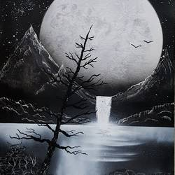 nature black and white spraypaint on canvas , 16 x 20 inch, aizaz vakil,nature paintings,canvas,acrylic color,16x20inch,GAL0772119380Nature,environment,Beauty,scenery,greenery
