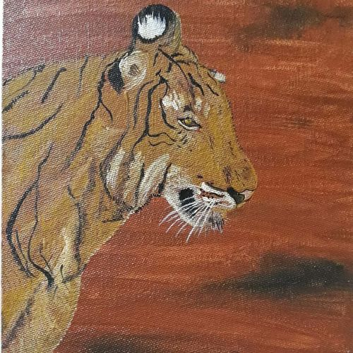 royal bengal tiger , 8 x 10 inch, anitha l,paintings,wildlife paintings,animal paintings,paintings for living room,canvas,acrylic color,8x10inch,GAL0968919396