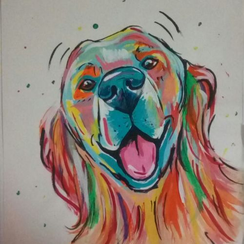 bernie sees you.... cute colorful dog, 11 x 14 inch, priyanshu sharma,paintings,dog painting,paintings for dining room,paintings for living room,paintings for bathroom,paintings for kids room,paintings for school,paintings for hospital,paper,acrylic color,11x14inch,GAL0973619475
