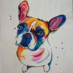 am arnold, amigo !! ......cute colorful dog, 11 x 14 inch, priyanshu sharma,paintings,dog painting,paintings for dining room,paintings for living room,paintings for bedroom,paintings for kids room,paintings for school,paintings for hospital,drawing paper,acrylic color,11x14inch,GAL0973619477