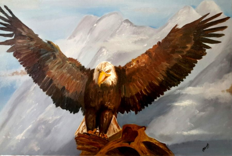 beyond the skies, 20 x 30 inch, amaey parekh,wildlife paintings,paintings for living room,canvas,oil,20x30inch,GAL075196