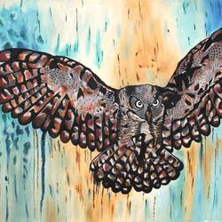animal colourful owl, 46 x 34 inch, vishal gurjar,animal paintings,paintings for office,paintings for kids room,paintings for hotel,paintings for school,paintings for hospital,canvas,oil,46x34inch