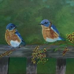 eastern blue birds, 12 x 24 inch, kranthi  tanneru,landscape paintings,paintings for living room,canvas,acrylic color,12x24inch,GAL077919788