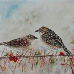 dunnock birds and winter berries, 20 x 13 inch, bharathi sivakumar,wildlife paintings,nature paintings,animal paintings,handmade paper,mixed media,watercolor,20x13inch,GAL0963019848Nature,environment,Beauty,scenery,greenery