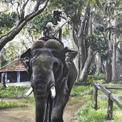 elephants of dubare i :the mahout , 10 x 14 inch, vineetha  j.malayil ,paintings,wildlife paintings,nature paintings,illustration paintings,photorealism paintings,photorealism,realism paintings,animal paintings,paintings for dining room,paintings for living room,paintings for bedroom,paintings for office,paintings for hotel,paintings for kitchen,paintings for school,paintings for hospital,canvas,oil,10x14inch,GAL0201719987Nature,environment,Beauty,scenery,greenery