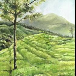 munnar, 8 x 12 inch, vineetha  j.malayil ,paintings,landscape paintings,nature paintings,illustration paintings,photorealism,realism paintings,paintings for dining room,paintings for living room,paintings for bedroom,paintings for office,paintings for hotel,paintings for school,paintings for hospital,canvas,oil,8x12inch,GAL0201719988Nature,environment,Beauty,scenery,greenery