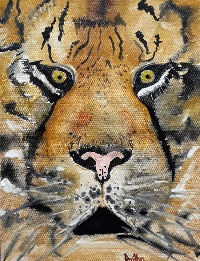 tigress avni, 8 x 10 inch, anitha l,paintings,wildlife paintings,paintings for living room,paintings for office,paintings for school,canvas,acrylic color,8x10inch,GAL0968920001
