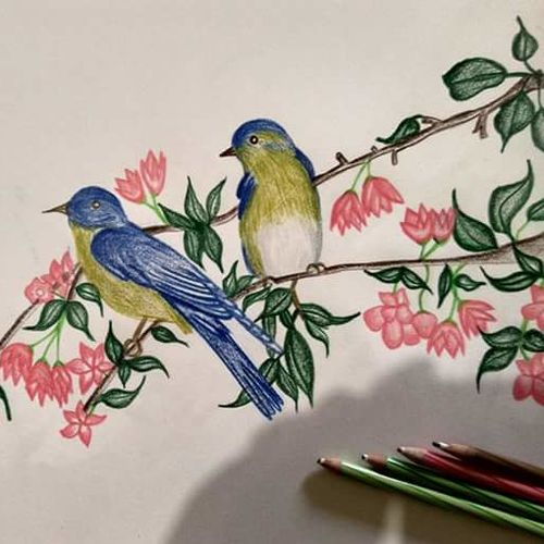 nature love, 8 x 12 inch, megha nayan,paintings,nature paintings,paintings for dining room,paintings for living room,paintings for school,cartridge paper,pencil color,8x12inch,GAL01006920012Nature,environment,Beauty,scenery,greenery