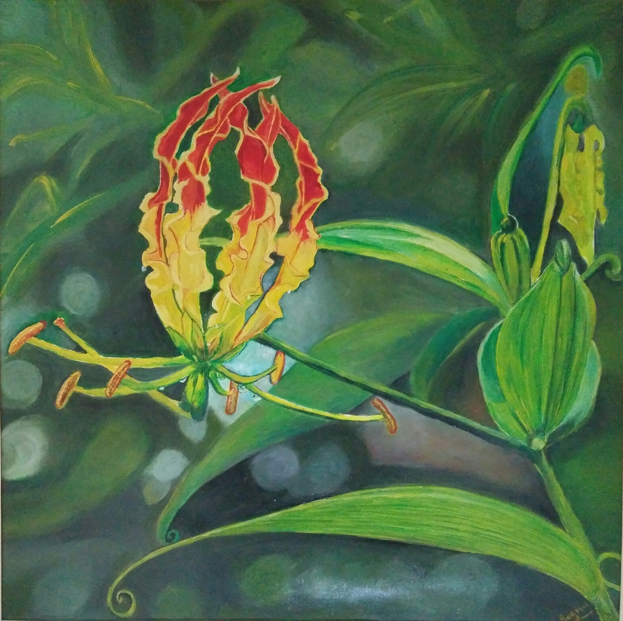 gloriosa superba, 15 x 15 inch, jugnu bakshi,paintings,flower paintings,nature paintings,paintings for dining room,paintings for living room,paintings for bedroom,paintings for office,paintings for hotel,paintings for school,paintings for hospital,oil sheet,oil,15x15inch,GAL0969320047Nature,environment,Beauty,scenery,greenery