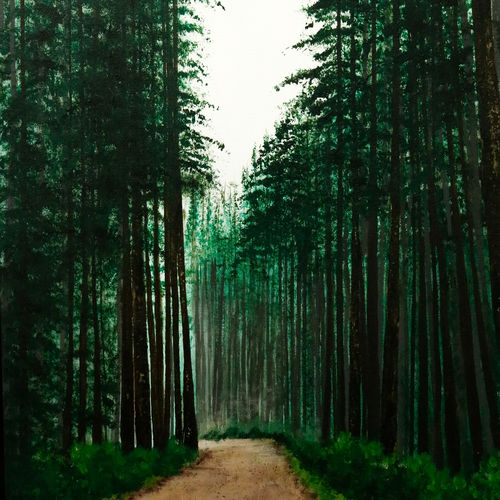 wild mystery forest, 16 x 22 inch, mayuri sinha,paintings,landscape paintings,nature paintings,photorealism paintings,realistic paintings,paintings for dining room,paintings for living room,paintings for bedroom,paintings for office,paintings for hotel,paintings for kitchen,paintings for school,paintings for hospital,canvas,acrylic color,mixed media,16x22inch,nature,landscape,green,greenery,GAL01037420413Nature,environment,Beauty,scenery,greenery,tree,forest,peace,mild,trees