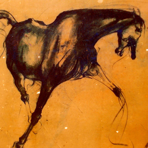 horse  5, 24 x 20 inch, satyajit chandra chanda,wildlife paintings,paintings for office,animal paintings,horse paintings,paper,charcoal,24x20inch,GAL07502049