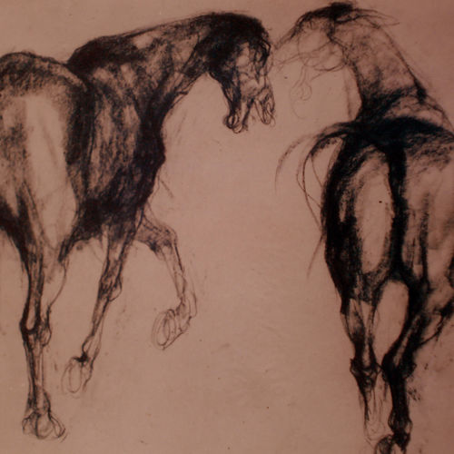 two horses -2, 24 x 20 inch, satyajit chandra chanda,wildlife paintings,paintings for office,animal paintings,horse paintings,paper,charcoal,24x20inch,GAL07502057