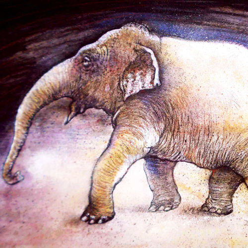 elephant, 30 x 20 inch, satyajit chandra chanda,wildlife paintings,paintings for office,animal paintings,paper,mixed media,30x20inch,GAL07502066