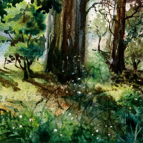 day light on lake, 16 x 11 inch, prabhakaran parappur,paintings,landscape paintings,nature paintings,paintings for living room,canson paper,watercolor,16x11inch,GAL0753720871Nature,environment,Beauty,scenery,greenery