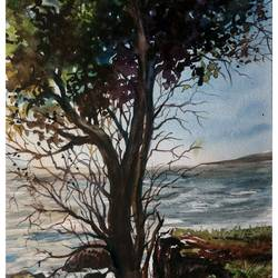 landscape, 16 x 11 inch, prabhakaran parappur,paintings,landscape paintings,nature paintings,paintings for living room,canson paper,watercolor,16x11inch,GAL0753720954Nature,environment,Beauty,scenery,greenery