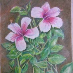 pink hibiscus, 12 x 17 inch, prabha  panth,drawings,paintings for living room,realism drawings,paintings for living room,drawing paper,pencil color,12x17inch,GAL0390721074