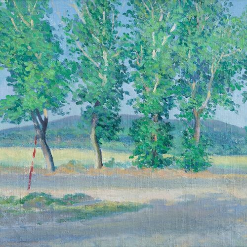 poplars in anapa , 20 x 15 inch, moesey li,landscape paintings,paintings for living room,canvas,oil paint,20x15inch,GAL07182117