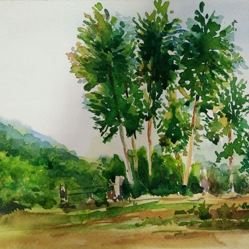 greens, 12 x 8 inch, sudha baregar,paintings,landscape paintings,nature paintings,paintings for living room,paintings for bedroom,paintings for office,paintings for hotel,paper,watercolor,12x8inch,GAL01111121246Nature,environment,Beauty,scenery,greenery
