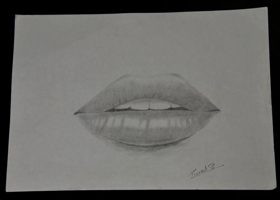 Buy Realistic Lips Painting At Lowest Price By Puneet Bangera