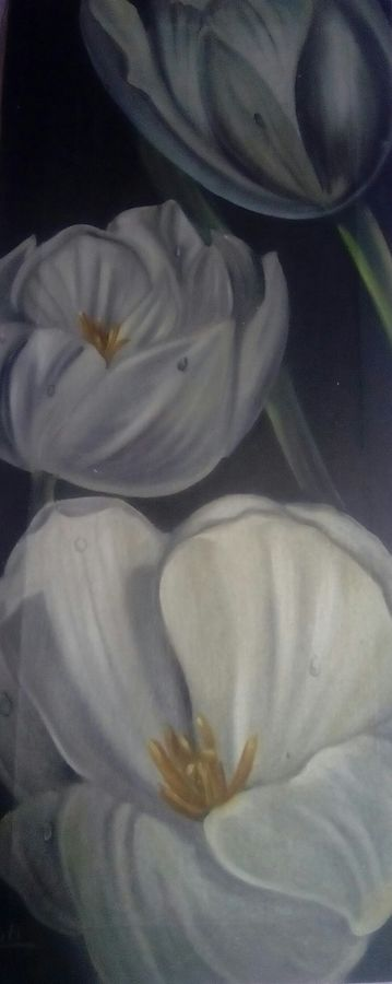feel happy, 12 x 24 inch, jyoti chauhan,flower paintings,paintings for office,canvas,oil,12x24inch,GAL08412146