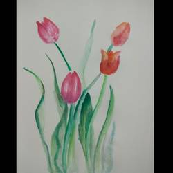 tulips, 8 x 10 inch, anima sinha,paintings,flower paintings,paintings for dining room,paintings for living room,paintings for bedroom,paintings for office,paintings for dining room,paintings for living room,paintings for bedroom,paintings for office,paper,watercolor,8x10inch,GAL0966721512