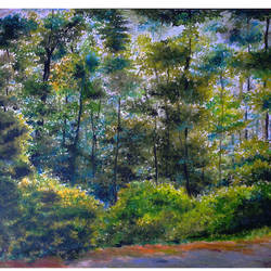 forest, 20 x 24 inch, arpita biswas dasgupta,paintings,wildlife paintings,landscape paintings,nature paintings,paintings for dining room,paintings for living room,paintings for bedroom,paintings for office,paintings for kids room,paintings for hotel,paintings for kitchen,paintings for school,paintings for hospital,canson paper,pastel color,20x24inch,GAL01013621598Nature,environment,Beauty,scenery,greenery