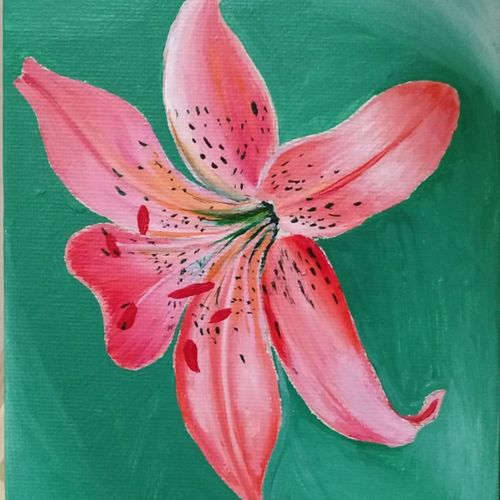 tiger lily, 7 x 5 inch, anirban karmakar,paintings,flower paintings,paintings for living room,paintings for office,paintings for school,paintings for hospital,paintings for living room,paintings for office,paintings for school,paintings for hospital,canvas,acrylic color,7x5inch,GAL0864421611