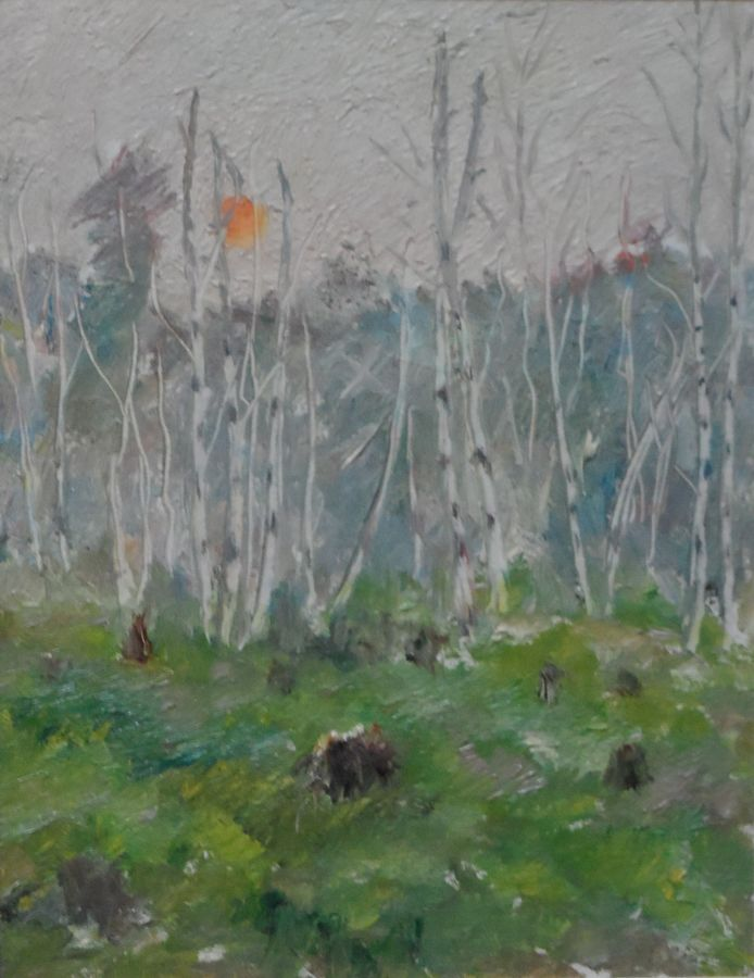 birch forest, 13 x 10 inch, moesey li,landscape paintings,paintings for living room,paintings,thick paper,oil paint,13x10inch,GAL07182165