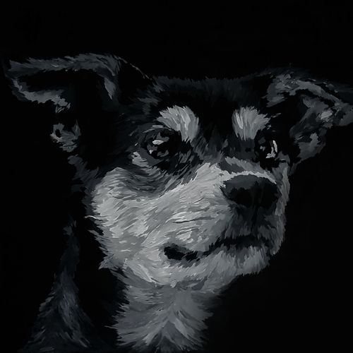 doggo, 26 x 38 inch, karthik ramakrishnan,paintings,wildlife paintings,figurative paintings,modern art paintings,expressionist paintings,illustration paintings,impressionist paintings,photorealism paintings,photorealism,portraiture,realism paintings,surrealist paintings,animal paintings,contemporary paintings,love paintings,dog painting,paintings for dining room,paintings for living room,paintings for bedroom,paintings for office,paintings for bathroom,paintings for kids room,paintings for hotel,paintings for kitchen,paintings for school,paintings for hospital,canvas,acrylic color,ink color,oil,graphite pencil,26x38inch,GAL01072121679