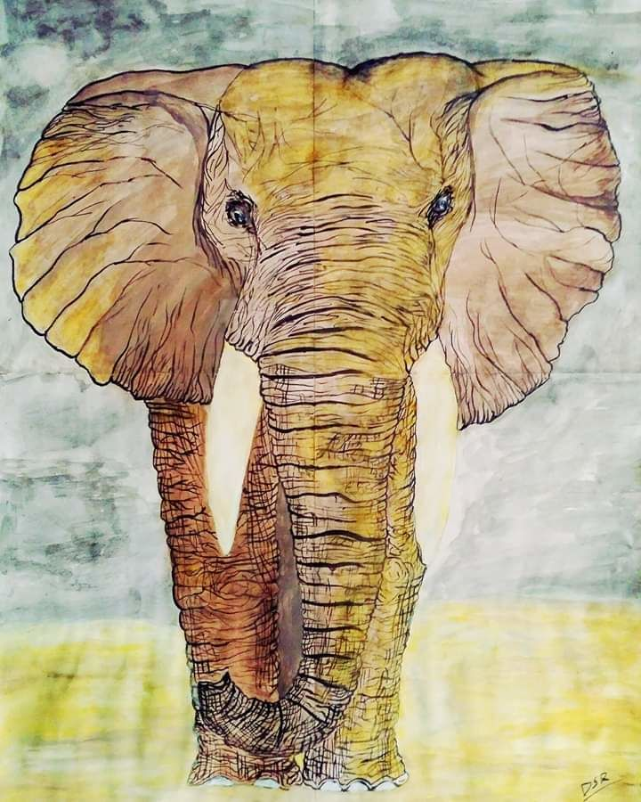 standing on feet, 16 x 23 inch, deepak  rathore ,paintings,wildlife paintings,nature paintings,animal paintings,elephant paintings,paintings for dining room,paintings for living room,paintings for bedroom,paintings for office,paintings for kids room,paintings for hotel,paintings for kitchen,paintings for school,paintings for hospital,thick paper,poster color,16x23inch,GAL01111421711Nature,environment,Beauty,scenery,greenery