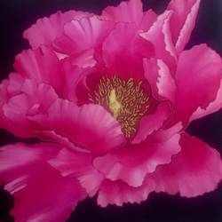 pink peony, 15 x 15 inch, mini k,paintings,flower paintings,paintings for dining room,paintings for living room,paintings for bedroom,paintings for hotel,silk,fabric,15x15inch,GAL0882921730