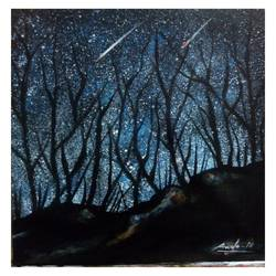 night sky, 16 x 20 inch, velmourougan c,paintings,wildlife paintings,landscape paintings,nature paintings,paintings for bedroom,paintings for kids room,paintings for bedroom,paintings for kids room,canvas,acrylic color,16x20inch,GAL01161321770Nature,environment,Beauty,scenery,greenery