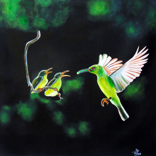 beautiful birds, 24 x 23 inch, rijoy  emmanuel,paintings,wildlife paintings,figurative paintings,animal paintings,paintings for dining room,paintings for living room,paintings for bedroom,paintings for office,paintings for kids room,paintings for kitchen,paintings for hospital,canvas,acrylic color,24x23inch,GAL0643121820
