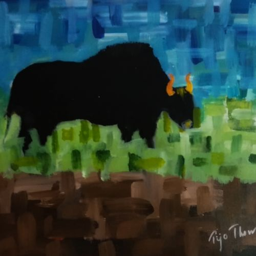 bison, 20 x 16 inch, tijo thomas,paintings,abstract paintings,wildlife paintings,figurative paintings,modern art paintings,conceptual paintings,nature paintings,abstract expressionist paintings,animal paintings,contemporary paintings,paintings for dining room,paintings for living room,paintings for bedroom,paintings for office,paintings for kids room,paintings for hotel,paintings for school,paintings for hospital,canvas,acrylic color,fabric,20x16inch,GAL01171321924Nature,environment,Beauty,scenery,greenery