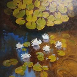 waterlily , 20 x 20 inch, anuradha kulkarni,20x20inch,canvas,paintings,nature paintings,oil,GAL0497422049Nature,environment,Beauty,scenery,greenery