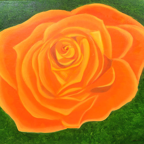 orange rose, 24 x 24 inch, ananjay sharma,24x24inch,canvas,paintings,flower paintings,paintings for dining room,paintings for living room,paintings for office,paintings for hotel,oil,GAL01266422697