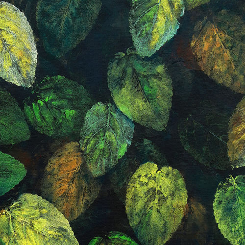green leaves , 16 x 20 inch, seby augustine,16x20inch,canvas board,paintings,surrealist paintings,contemporary paintings,paintings for dining room,paintings for living room,paintings for bedroom,paintings for office,paintings for bathroom,paintings for kids room,paintings for hotel,paintings for kitchen,paintings for school,paintings for hospital,acrylic color,GAL015022985