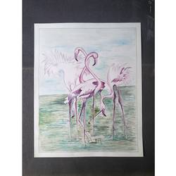 sarus, 14 x 15 inch, rajesh kumar,14x15inch,drawing paper,paintings,wildlife paintings,watercolor,GAL01229923001