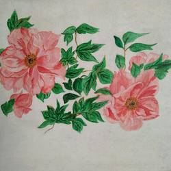 peachy peonies, 16 x 12 inch, kamakshi jamwal,16x12inch,canvas,paintings,flower paintings,paintings for dining room,paintings for living room,paintings for bedroom,paintings for office,paintings for bathroom,paintings for hotel,paintings for hospital,acrylic color,GAL0313723121