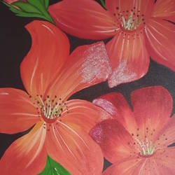 orange flowers on black background canvas painting, 16 x 24 inch, ritu mittal,16x24inch,canvas,flower paintings,oil color,GAL01265423196