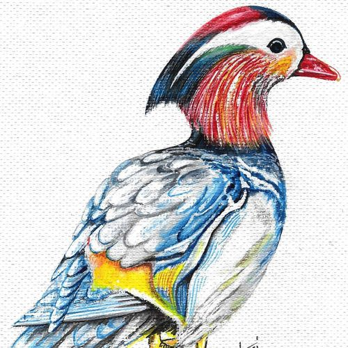 birds , 7 x 9 inch, hari  kashyap,7x9inch,handmade paper,paintings,wildlife paintings,paintings for living room,paintings for office,paintings for kids room,acrylic color,watercolor,GAL0538423202