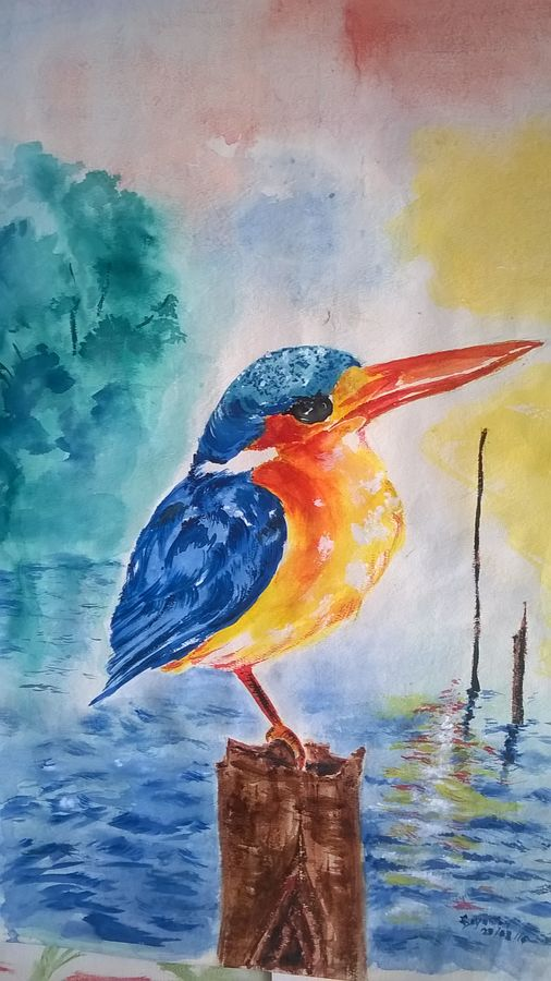 kingfisher , 21 x 30 inch, sayantan  ghati ,wildlife paintings,paintings for dining room,nature paintings,paintings for living room,paintings for office,paper,watercolor,21x30inch,GAL07702325Nature,environment,Beauty,scenery,greenery