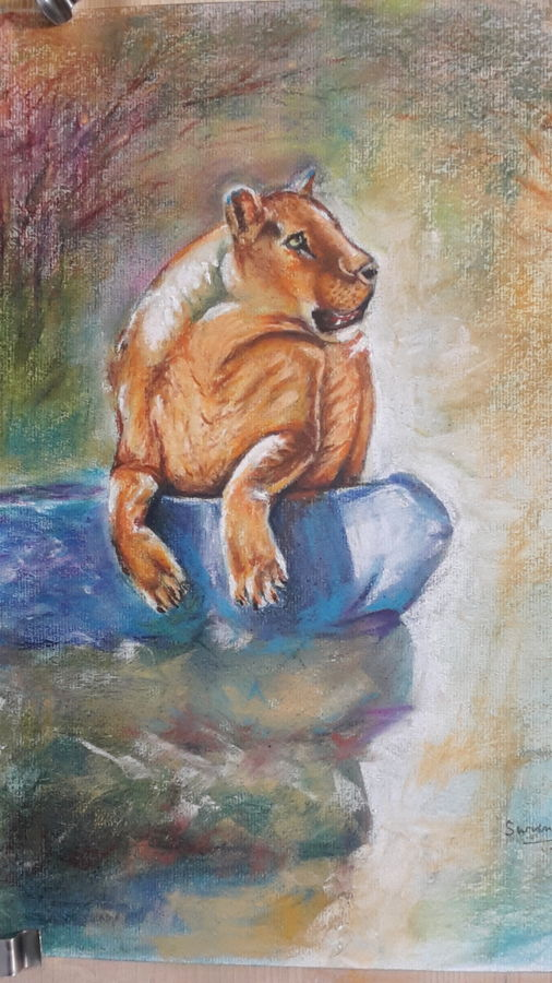 lioness , 12 x 17 inch, surendra  panchal,12x17inch,brustro watercolor paper,paintings,wildlife paintings,animal paintings,paintings for living room,paintings for office,paintings for school,pastel color,GAL01323523254