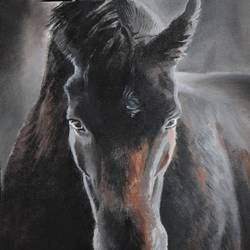 horse, 13 x 19 inch, venkatesh krishna,13x19inch,canvas,paintings,horse paintings,paintings for living room,paintings for bedroom,paintings for office,paintings for kids room,paintings for school,paintings for living room,paintings for bedroom,paintings for office,paintings for kids room,paintings for school,oil color,GAL01336523360