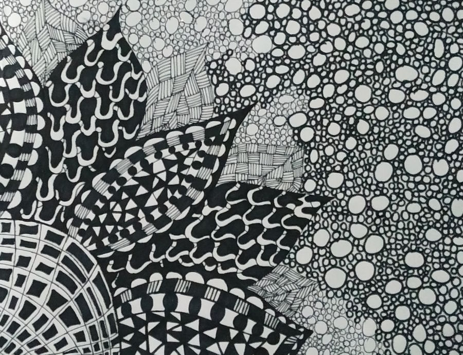black and white, 8 x 11 inch, rayana saha,8x11inch,drawing paper,paintings,abstract paintings,paintings for dining room,paintings for living room,paintings for office,paintings for school,pen color,GAL01304623459