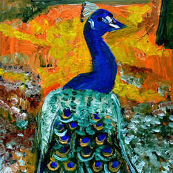 peacock-2, 12 x 15 inch, anand manchiraju,12x15inch,fabriano sheet,paintings,wildlife paintings,nature paintings,animal paintings,paintings for dining room,paintings for living room,paintings for bedroom,paintings for office,paintings for kids room,mixed media,GAL01254023511